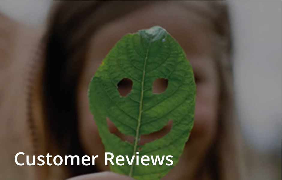 Ponthir Group Reviews
